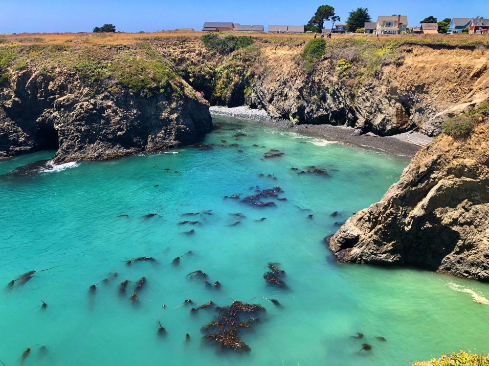 Point Mendocino Trail
